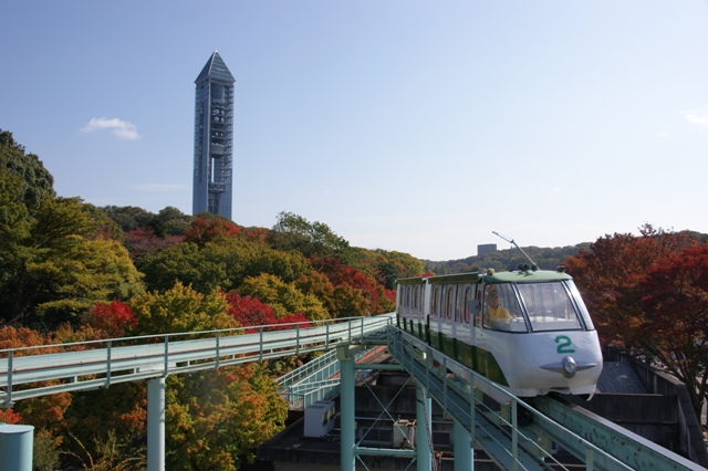 スカイビュートレインに乗って秋を満喫しませんか?