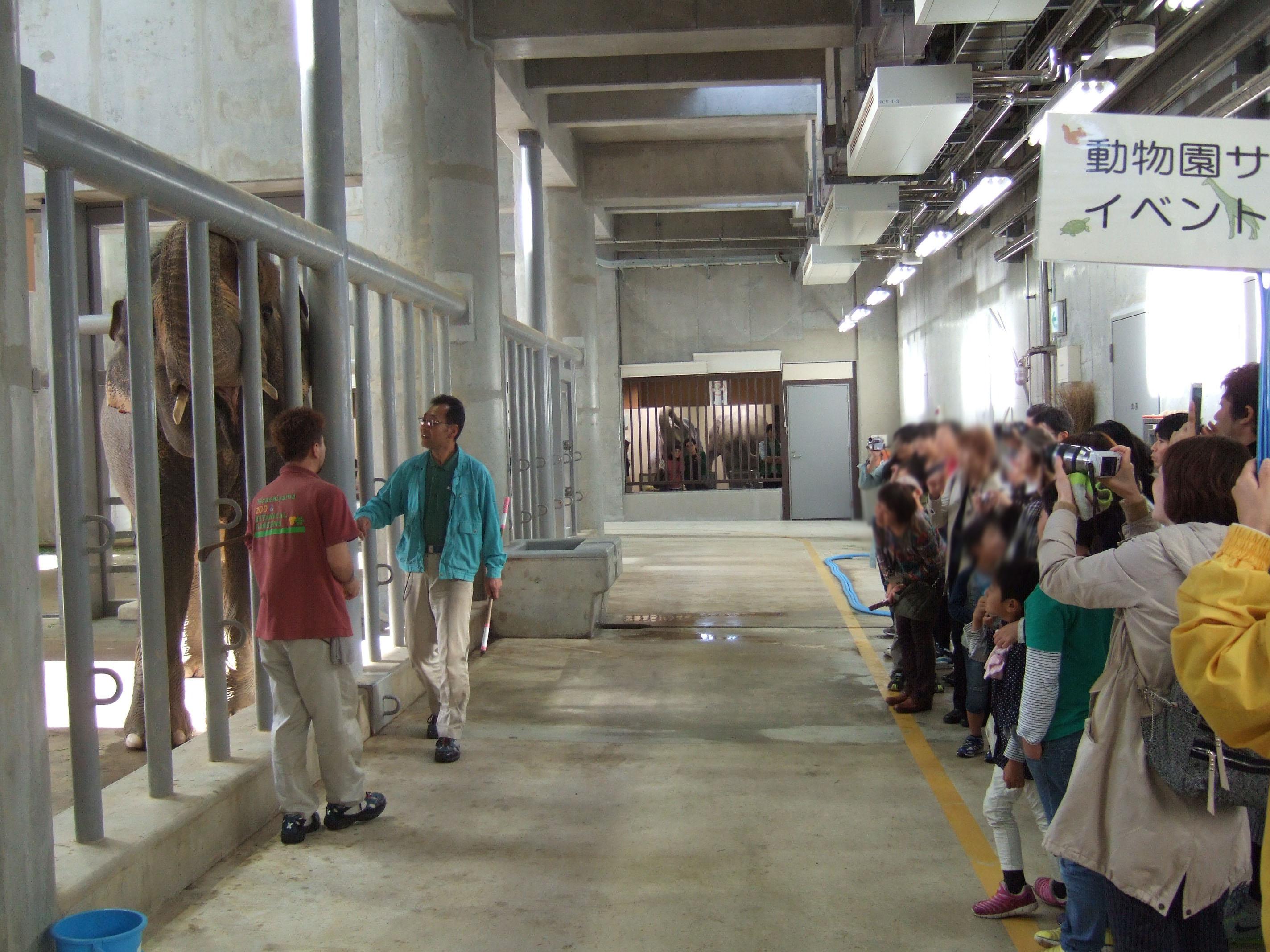 動物園サポーターイベントを開催しました