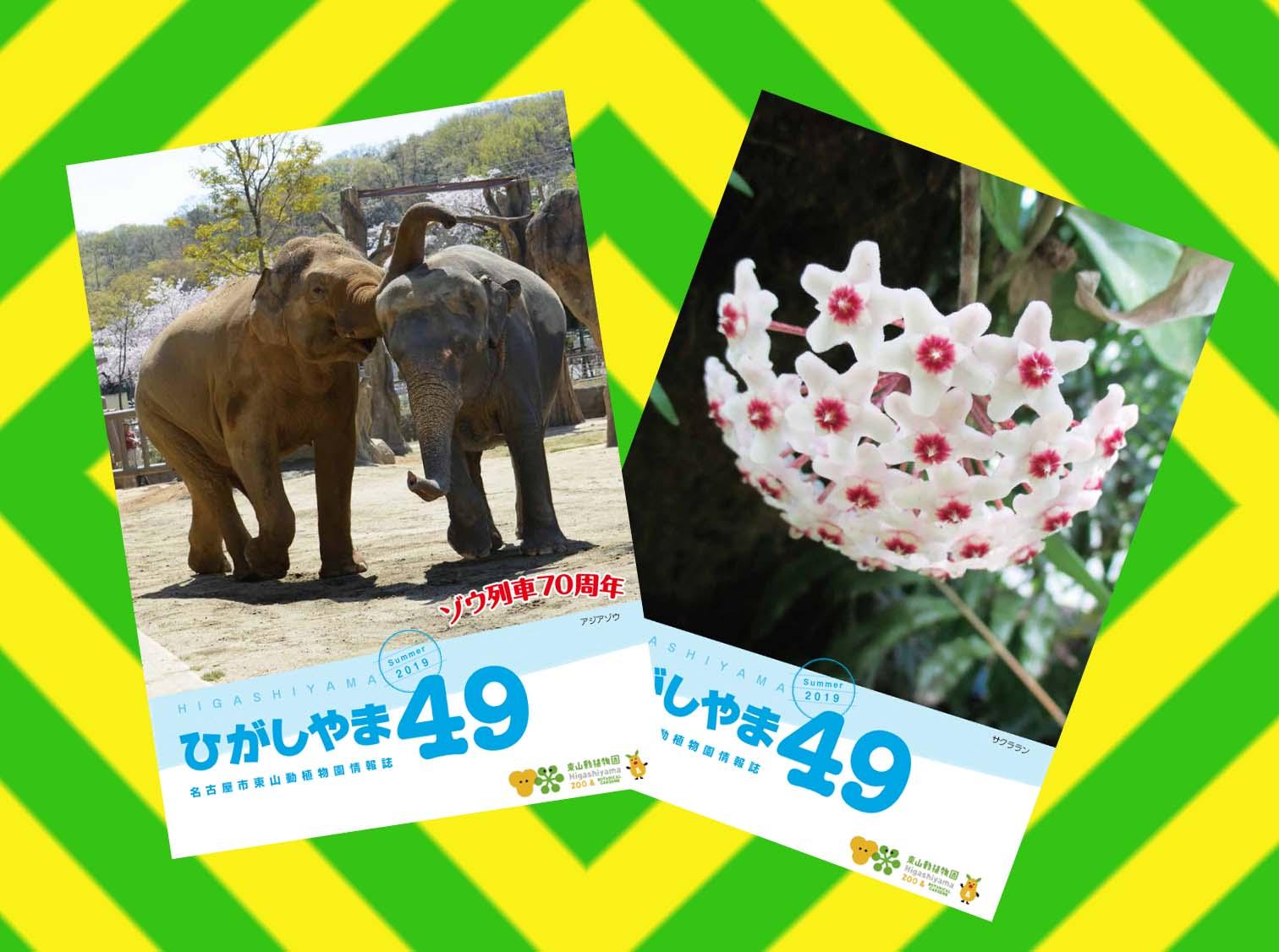 東山動植物園の情報誌ひがしやま49号を発行しました