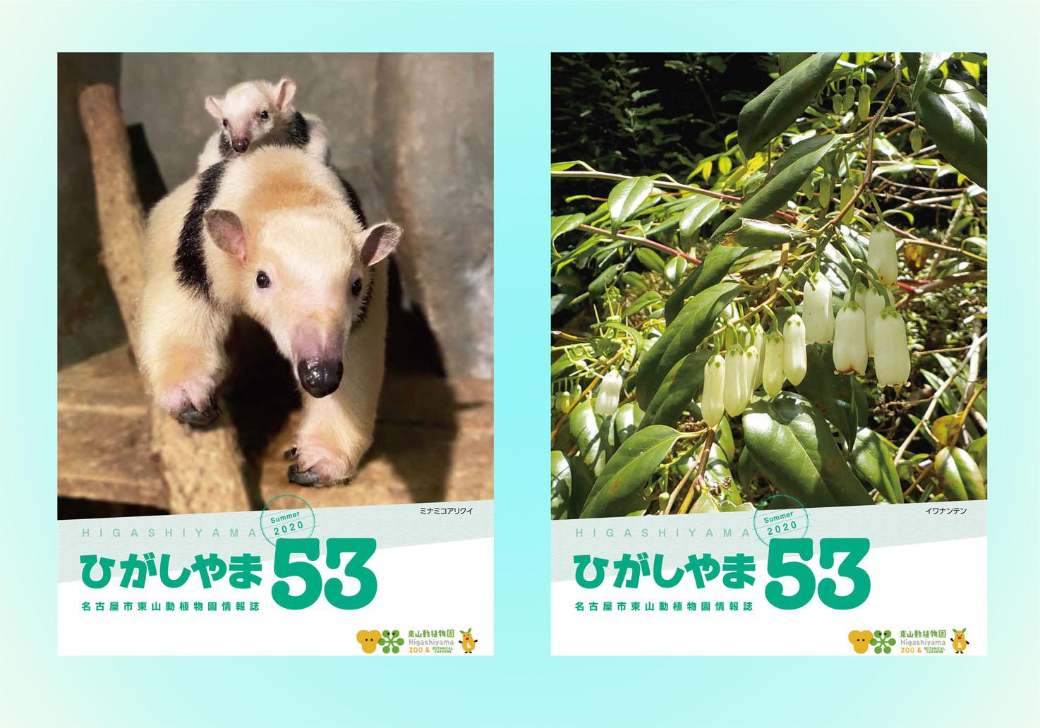 東山動植物園の情報誌ひがしやま53号を発行しました。