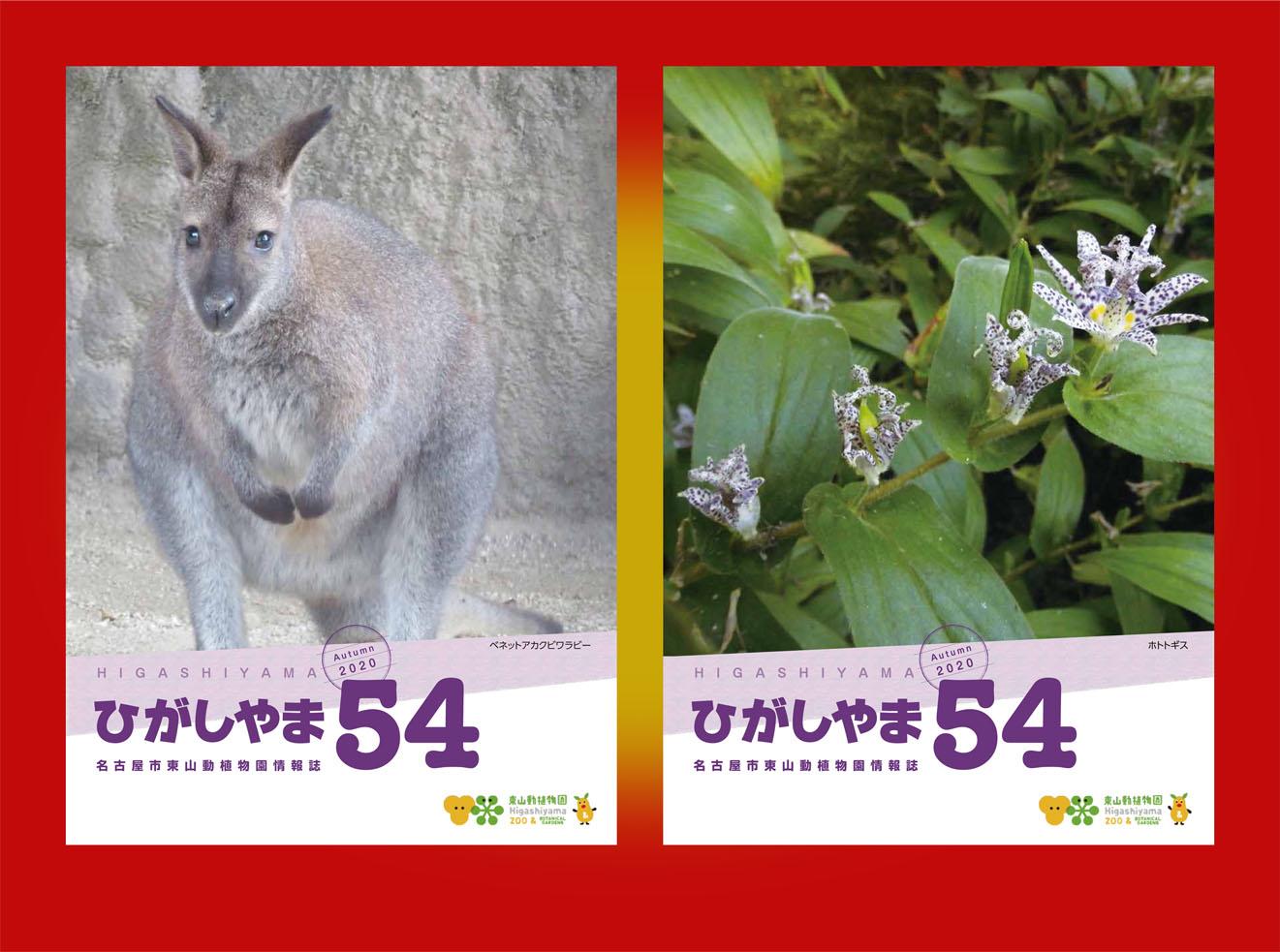 東山動植物園の情報誌ひがしやま54号を発行しました