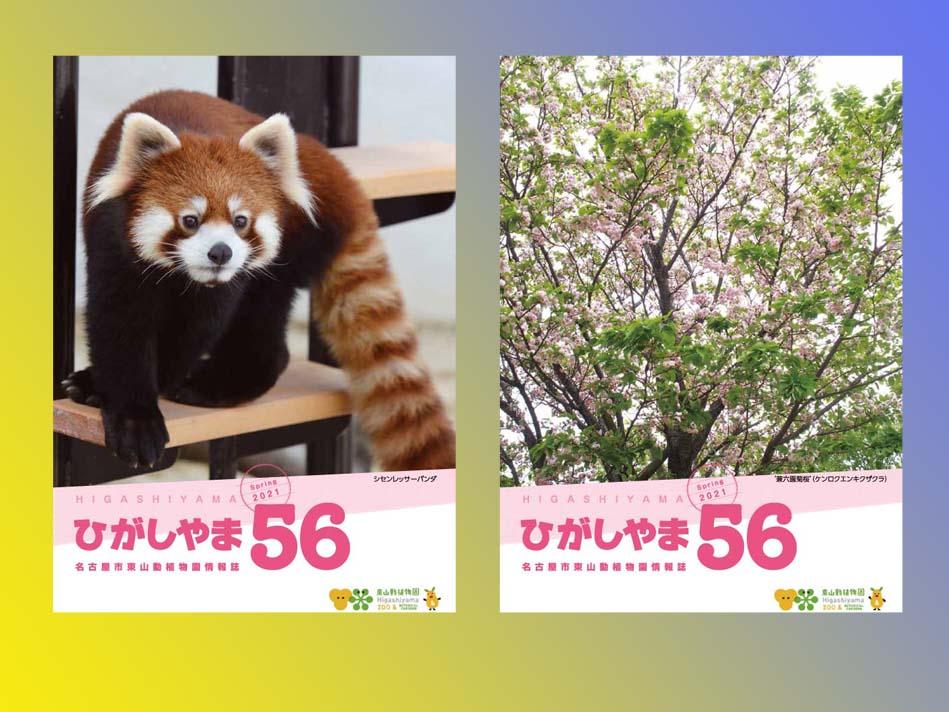 東山動植物園の情報誌ひがしやま56号を発行しました。