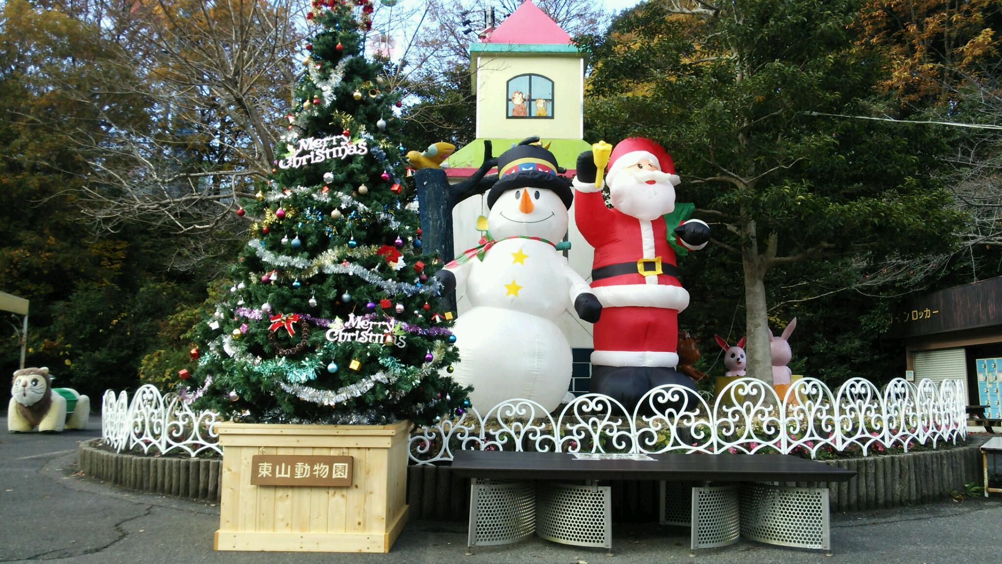 北園広場のクリスマスツリー