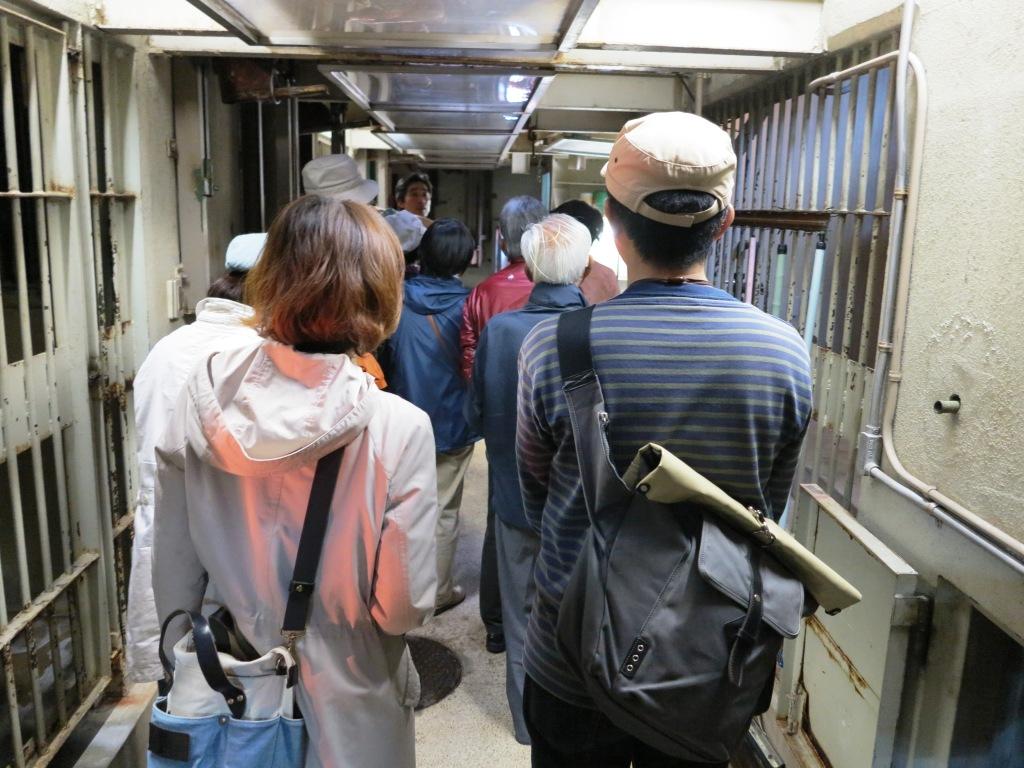 サル舎・類人猿舎見学ツアーを開催しました