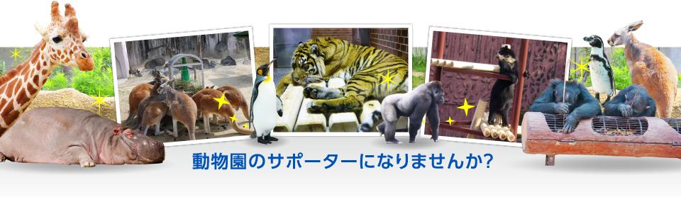 動物園のサポーターになりませんか?