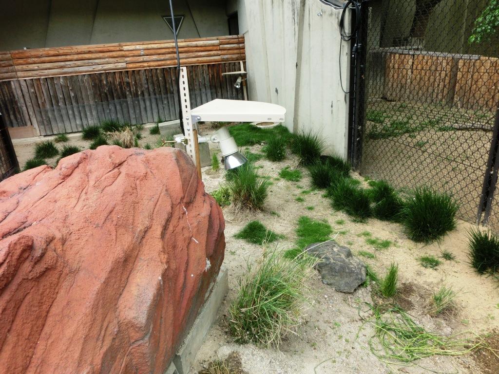メキシコウサギの遠赤外線セラミックヒーターランプ(平成26年2月設置)